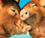 animals-kissing-animals--large-msg-132822713408